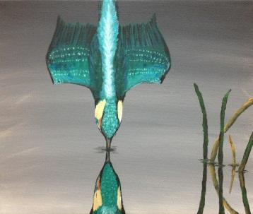 17 Kingfisher